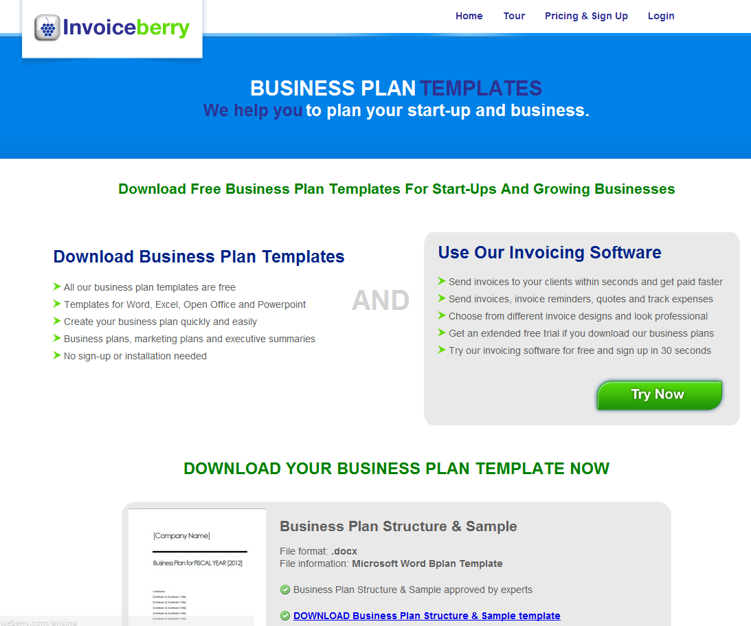 Business Plans for Tier 1 (Entrepreneur) Visa Applications