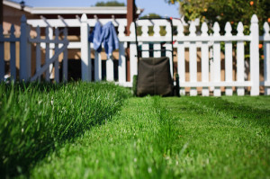 lawn_care_business_invoices_2