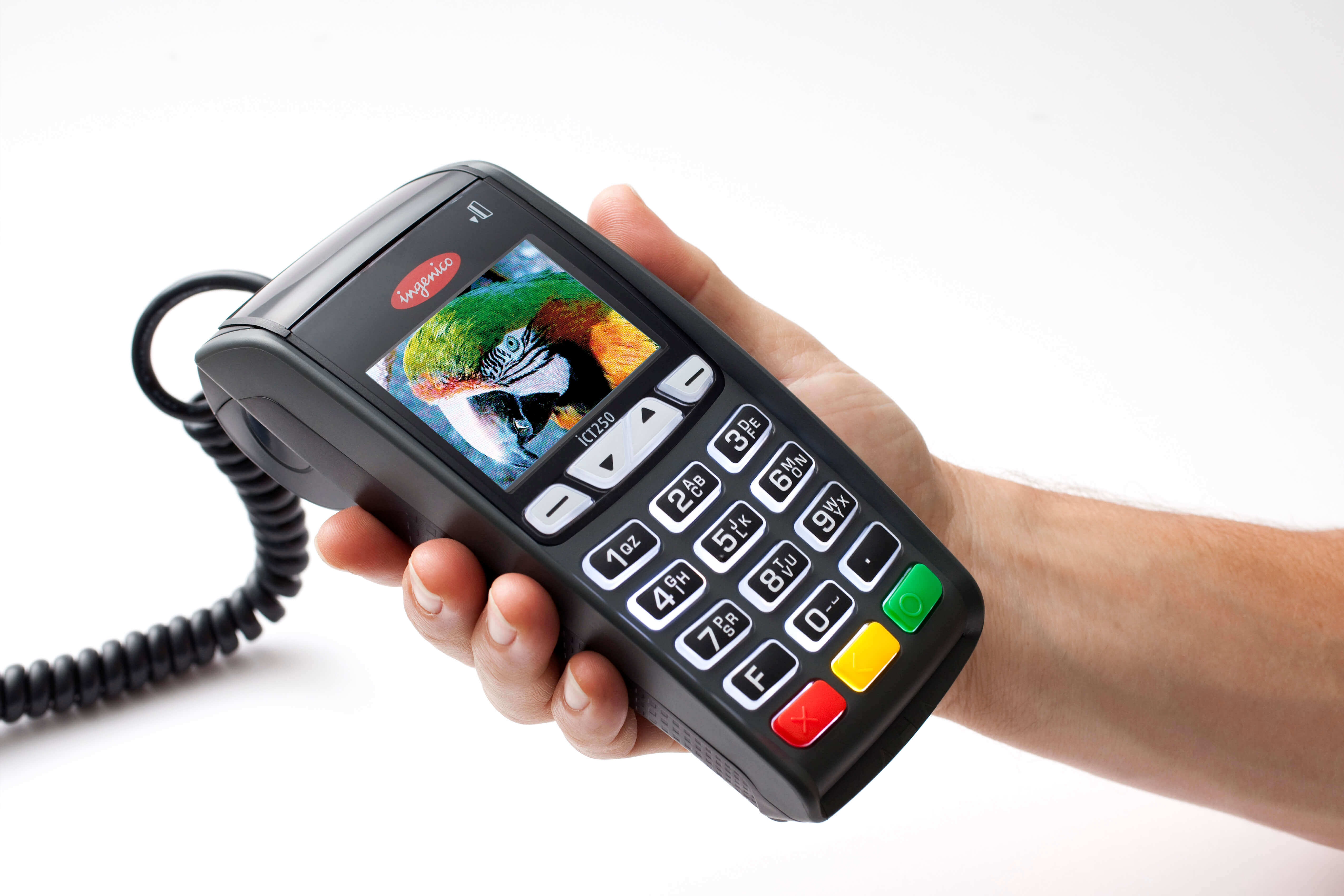 Ingenico one of the most traditional way of accepting credit card payments