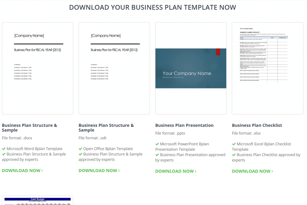 Accounting-Software-InvoiceBerry-Business-Plan