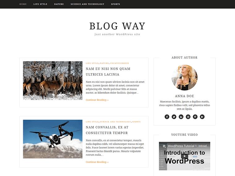 blogway theme homepage